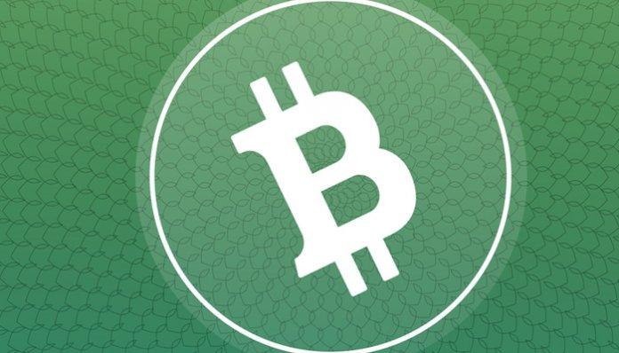 brian_kelly_crypto-burgeroorlog_bitcoin_cash_BCH_oorzaak_recente_sell-off