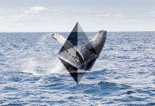cryptocurrency_whales_vergroten_hun_voorraad