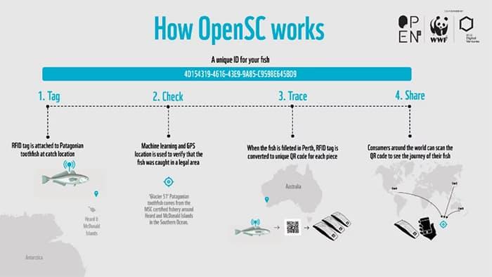 wereld_natuur_fonds_lanceert_blockchain-oplossing_voor_voedselvoorzieningsketen_opensc