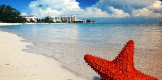 De centrale bank van de Bahama's gaat een nationale digitale valuta lanceren