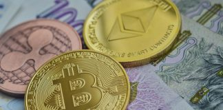in_deze_landen_is_de_adoptie_van_cryptocurrencies_het_grootst