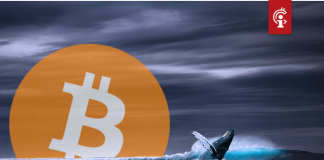 Nieuwe grote bitcoin (BTC) transacties mogelijk gekoppeld aan Chinese ponzifraude