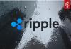 Peter Brandt verdenkt Ripple van marktmanipulatie ripple (XRP), verwacht grote daling