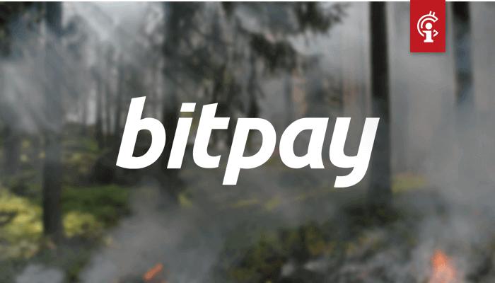 bitpay_weigert_grote_donatie_aan_goed_doel_dat_zich_inzet_voor_amazone_gebied_regenwoud