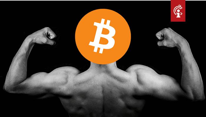Bitcoin (BTC) versterkt positie als het geld van het internet door dominantie