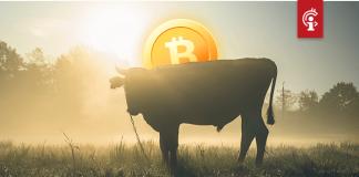 """""""Bitcoin (BTC) zal nog een bull-markt doormaken, veel groter dan de eerste"""""""