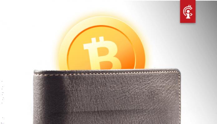 CEO van Zimbabwaanse crypto-exchange is wachtwoord van bitcoin (BTC) wallet kwijt