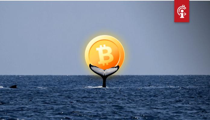 Onderzoek: Een enkele bitcoin (BTC) whale was verantwoordelijk voor de all-time high eind 2017