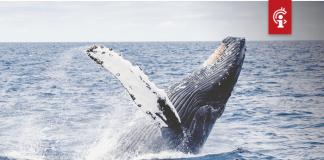 Whale Alert Transactie van 60 miljoen XRP vanaf Bithumb