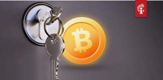 """Advocaat Craig Wright: """"Er stonden geen bitcoin (BTC) private keys in het ontvangen bestand"""""""