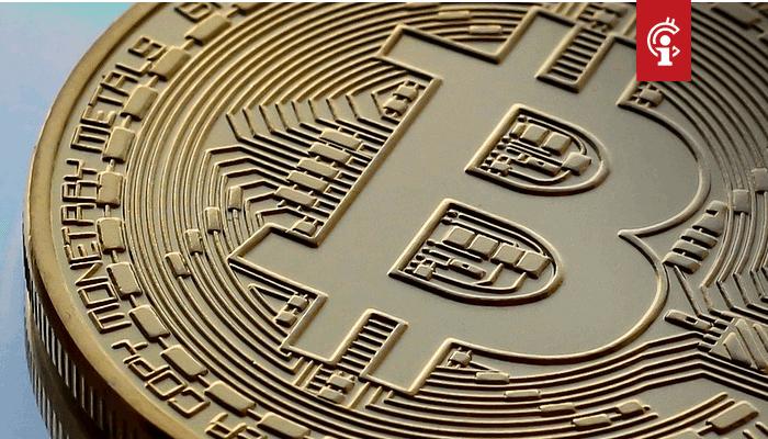 2020 wordt het jaar voor Bitcoin (BTC), aldus Mike Novogratz
