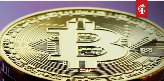 Cryptomarkt daalt meer dan $13 miljard in waarde na duikvlucht bitcoin (BTC) koers