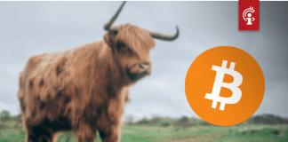 De bull-markt voor bitcoin (BTC) is gearriveerd, aldus Tom Lee en andere analisten