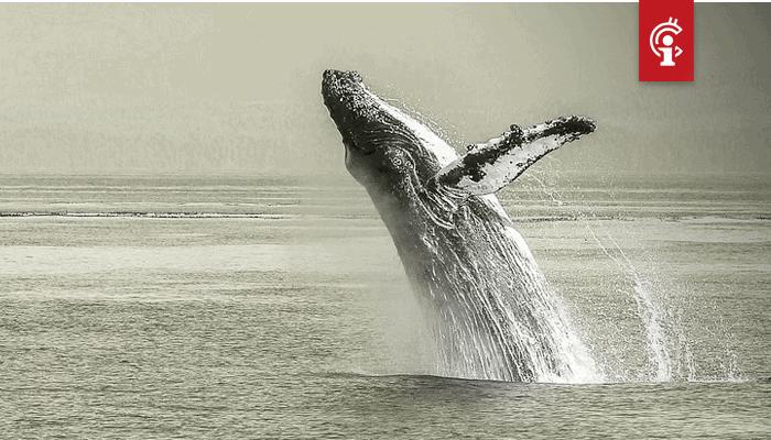 Whale verplaatst $1,1 miljard aan bitcoin (BTC), was het Craig Wright of toch iemand anders?