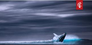 Ethereum (ETH) whales zijn ether aan het accumuleren, wat gaat dat met de koers doen?