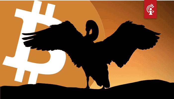 bitcoin_BTC_koers_heeft_te_maken_met_zwarte_zwaan_aldus_willy_woo