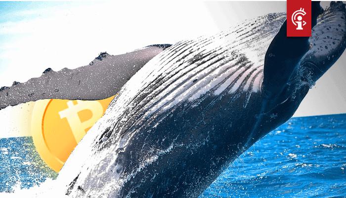 Bitcoin (BTC) halving al ingeprijsd, koers gaat wellicht crashen, zegt grote bitcoin whale