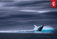 Bitcoin whale Joe007 over coronavirus Dit is de grootste economische schok van onze generatie