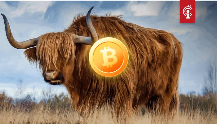 Bitcoin (BTC) bull en Wall Street-veteraan is