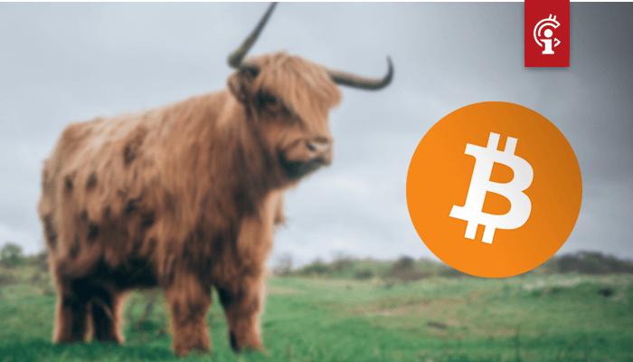 Bitcoin (BTC) op macroschaal nog steeds bullish, vindt deze analist