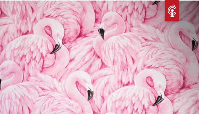 NEO concurreert met Ethereum en stapt DeFi in met lancering van Flamingo Finance (FLM)