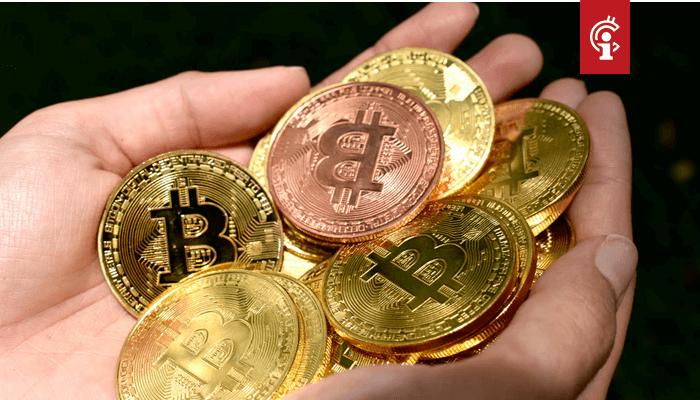 'Bitcoin (BTC) bevindt zich pas in een vroeg stadium, prijs kan nog 10 tot 20 keer stijgen'