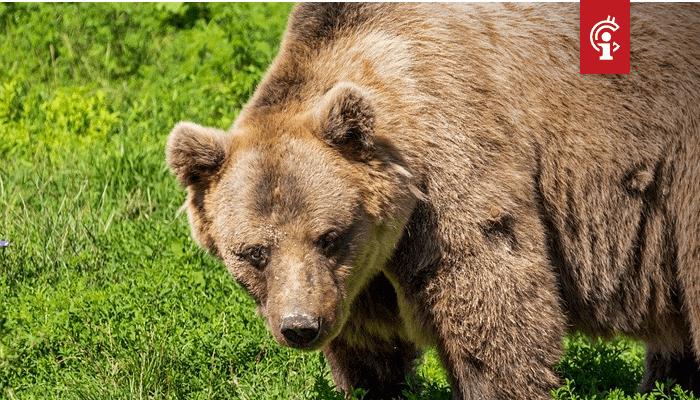 Bitcoin (BTC) vestigt nieuw jaarlijks hoogtepunt, bears gooien roet in het eten