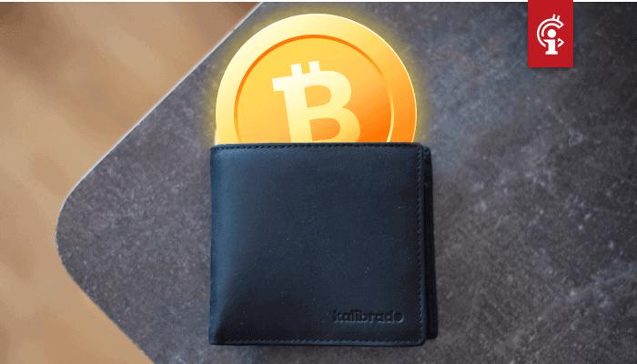 Bitcoin wallet adressen met $10, $100 en $1000 aan BTC bereiken nieuwe all-time highs (ATH)