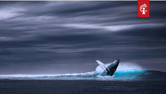 Bitcoin (BTC) whales kochten relatief hoog in, blijkt uit data van Whalemap