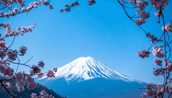 Ripple (XRP) koers duikt onder $0,2, kan Japan het bedrijf redden